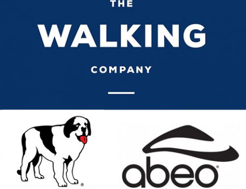 Public Sale The Walking Company, Big Dog Usa, Inc., and ABEO Footwear, Inc., and Of The Walking Company Holdings, Inc.